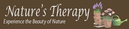 Nature's Therapy Banner